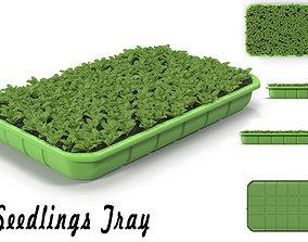3D model Seedlings Tray 3