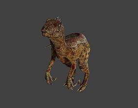 3D model Velociraptor