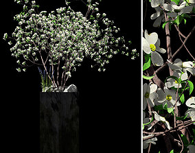 3D model garden Flowerbed with Dogwood and lavenders