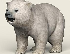 Game Ready Polar Bear Cub 3D model realtime