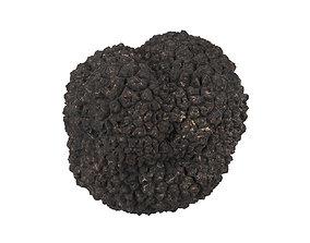 Photorealistic Truffle 3D Scan