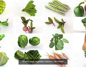 3D 80 Plus Mega Vegetable Collection