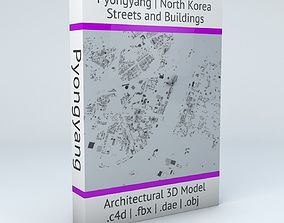 3D model Pyongyang Downtown Area Streets and Buildings