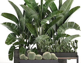 Decorative plants in flower pots for the interior 458 3D