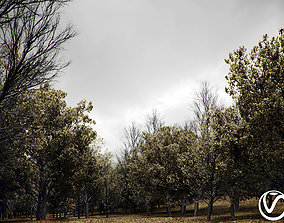 HeliosVegetation vol1 Autumn - leafless tree pack VRAY 3D