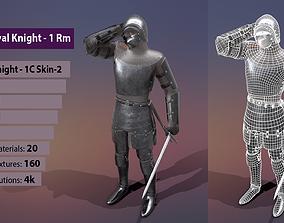 TAB Medieval Knight - 1Rm C - Skin2 3D asset
