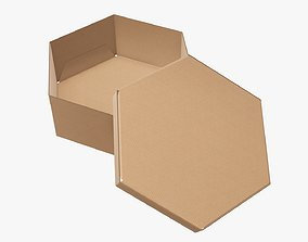 3D Paper box hexagonal packaging open 02 corrugated