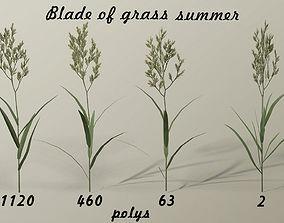 Blade of grass 3D model