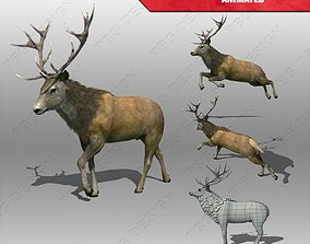 Stag Animated 3D asset