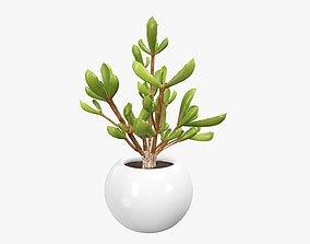 3D Potted plant decorative 08