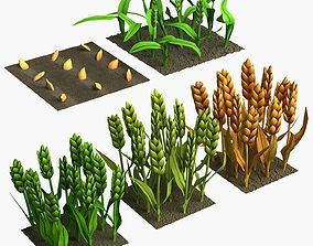 Barley Cartoon Stages of Grow 3D asset