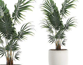 3D model Decorative palm in a white flowerpot 519