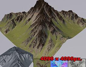 Mountain grass 3D model