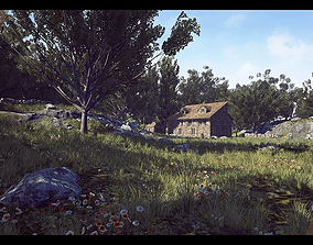 Country Side 3D asset