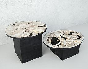 3D Petrified Wood Slice Coffee Tables 2