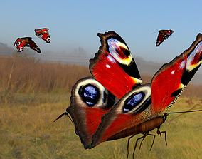 3D asset butterfly animation