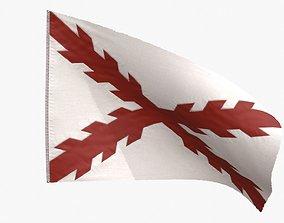3D asset Cross of Burgundy Flag