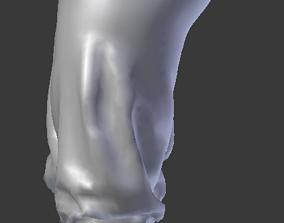 3D asset Low Waist Capri VL1