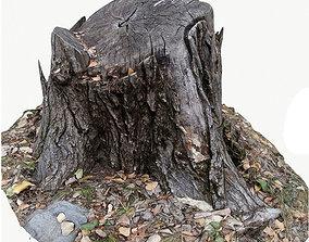 3d scan BPR tree stump 04 low-poly