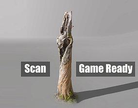 3D model realtime Tree dead 03 Scan