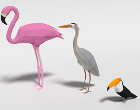 3D model Low Poly Cartoon Exotic Birds Pack