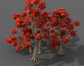 grass Forest - Maple Trees 17 3D model