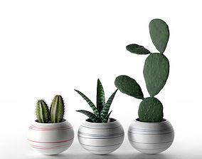3D model Cheerful Porcelain Mini Cactus Planters