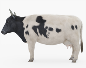 3D model Cow with Fur
