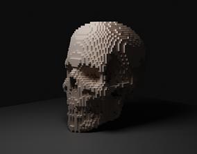 3D asset Voxel Skull