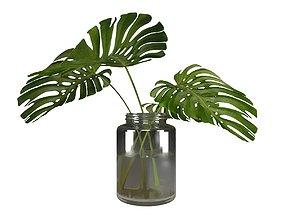 3D Vase Adams Rib