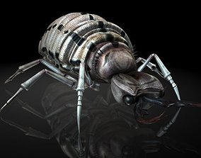 3D model Insect Collection 3 Antlion