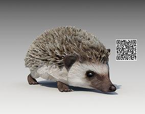 3D asset realtime Hedgehog Animated