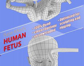 human fetus 3D asset game-ready