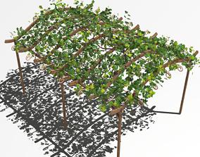Vine pergola 3D model