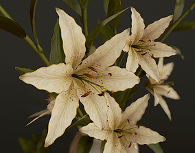 gameready Bouquet with Lilies - PBR Game Ready 3D model