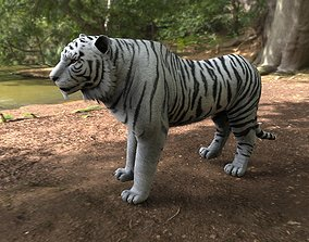 3D model white tiger