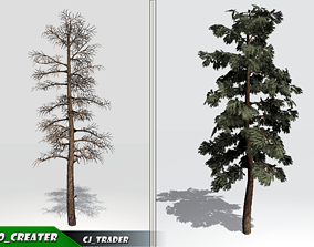 Realistic DouglasFir Tree Pack 3D Model low-poly