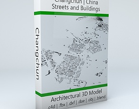 Changchun Streets and Buildings 3D model