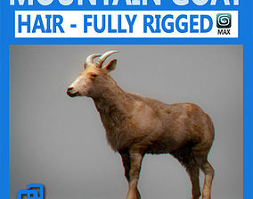 3D model Rigged Mountain Goat