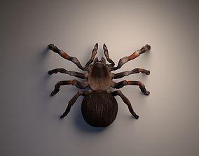 3D model game-ready PBR Tarantula rigged and animated