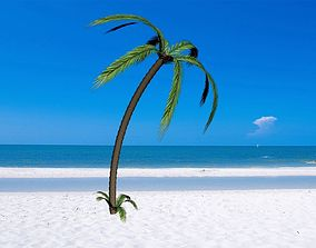3D Palm Tree lowpoly