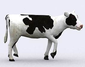 animated 3DRT - Calf