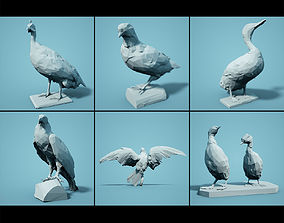 3D asset Bird Collection V1 Low Poly Models