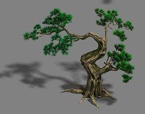 Forest - Pine 12 3D model