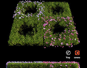 Plant Flower set 07 3D model