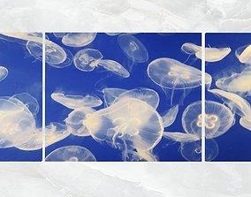 Triptych Wall Art Jellyfish 3D asset