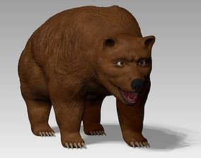 Grizzly Bear 3D asset animated