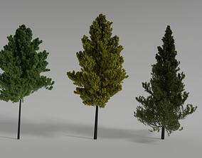 Realistic Scene Trees 3D Model