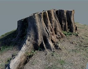 Tree Stump - Photo-Scanned 3D asset