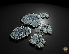 3D model Alien Plant Lichen Type1